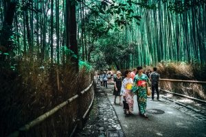 Off the Beaten Path Explore Japan Like a Local